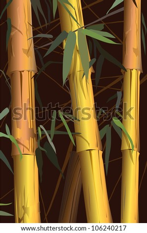 bamboo (vector drawing plant)