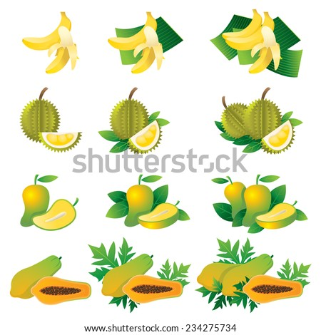 Banana, Durian, Mango, Papaya, Illustrate