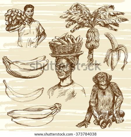 Bananas set, hand drawn illustration - stock vector
