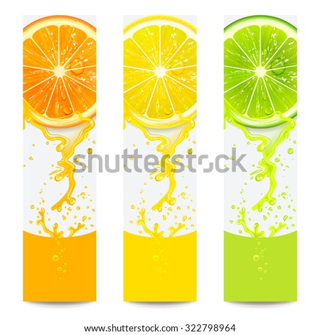 banners with fresh citrus fruit on a white background - stock vector