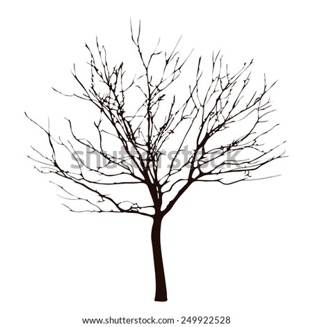 Barren tree on transparent white background - stock vector