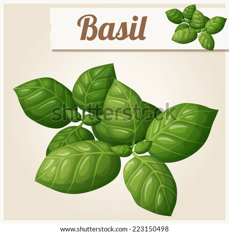 Basil leaves. Detailed Vector Icon. Series of food and drink and ingredients for cooking. - stock vector