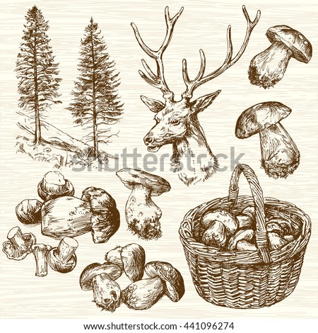 Basket of mushrooms in forest. Hand drawn set. - stock vector