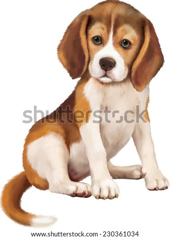 beagle puppy sitting over white background - stock vector