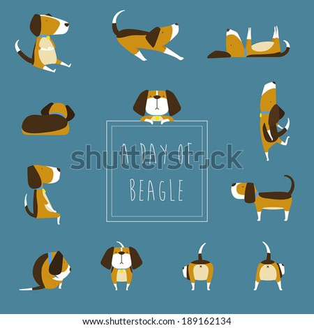Beagle Vector - stock vector