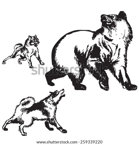 Bear and two dogs. Hunting. Vector. Illustration. - stock vector