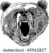 Bear etching - stock vector