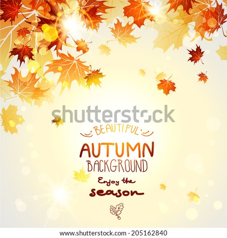 Beautiful autumn background with maple autumn leaves - stock vector