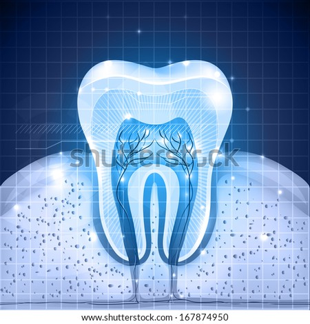 Beautiful blue tooth cross section. Detailed anatomy, abstract design with lights. - stock vector