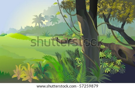 Beautiful forest , flora and fauna - stock vector