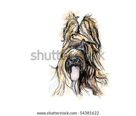 Beautiful hairy dog detail. - stock vector