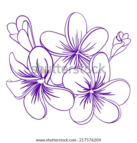 Beautiful flowers design stock vector 658167898 shutterstock beautiful hand drawn plumeria flowers pretty cute sketch mightylinksfo