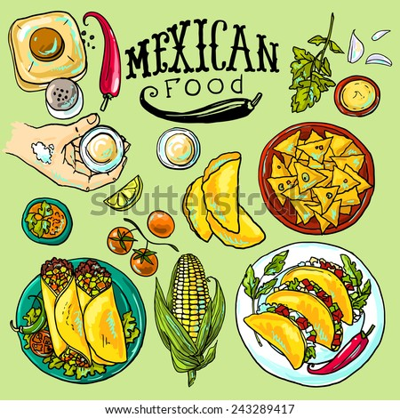 beautiful hand drawn set of mexican food illustration