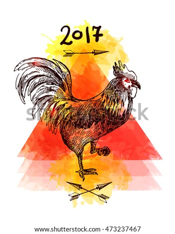 Beautiful hand drawn vector illustration sketching of cock. Tattoo style drawing. Use for postcards, print for t-shirts, posters.