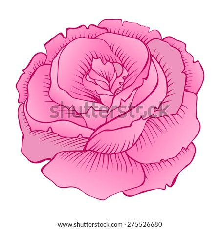 Beautiful isolated vector rose - stock vector
