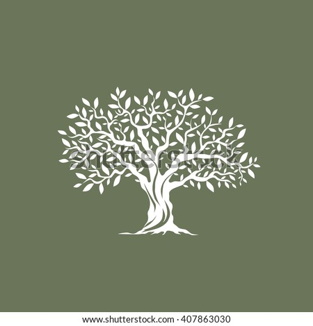 Beautiful Magnificent Olive Tree Silhouette On Stock ...