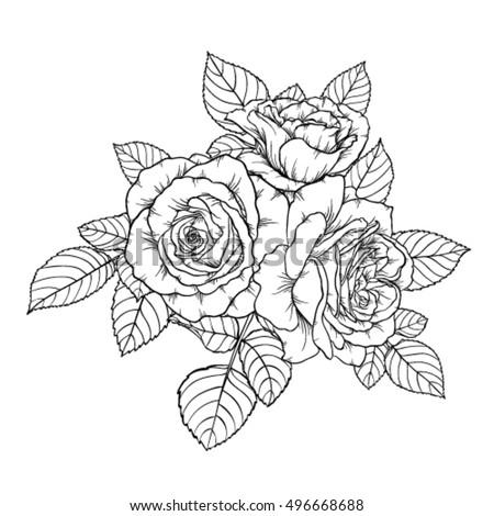 Mary E Bush Graphic Design