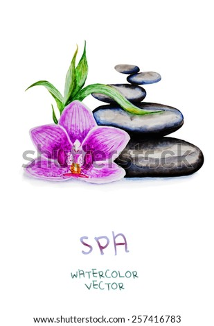 beautiful orchid with zen pebbles. Spa watercolor background isolated on white. Vector version