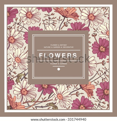 Beautiful pink and white flowers. Vintage Greeting Card with Blooming Flowers. Drawing, engraving. Freehand drawing. Place for Your Text. Chamomile, Wildflowers. Flora. Vector stock Illustration.  - stock vector
