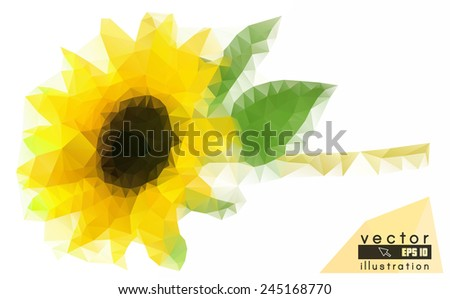 beautiful polygon sunflower, abstract natural flower background - stock vector