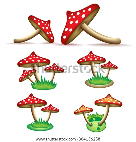 beautiful red mushroom with spots ripe delicious with a cap on the stem isolated on white background of the forest - stock vector