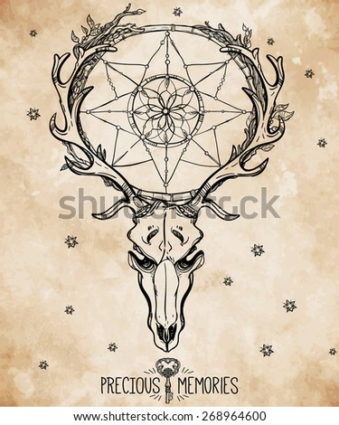 Beautiful scull tattoo line art. Vintage deer, bull, elk, horns. Antlers with branches, leaves ornate dream catcher with stars feathers. Hand drawn. Vector illustration. Isolated. Ink on aged card.  - stock vector