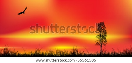 Beautiful sunset,made by mesh, vector illustration - stock vector