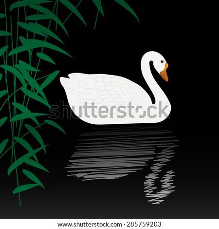 cartoon swan stock images royaltyfree images amp vectors
