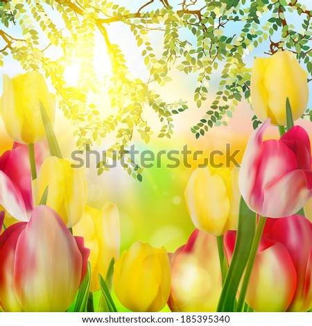 Beautiful tulips in spring time. And also includes EPS 10 vector - stock vector