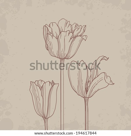 Beautiful vector background with hand drawn tulips. - stock vector