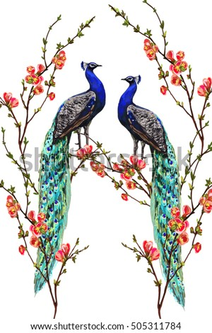 Peacock Stock Images, Royalty-Free Images & Vectors | Shutterstock