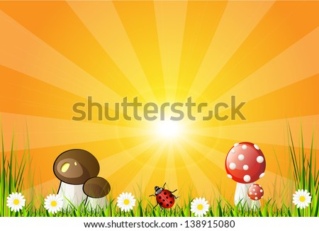 Beautiful vector landscape with green grass, garden, mushrooms and flowers. Abstract background design. - stock vector