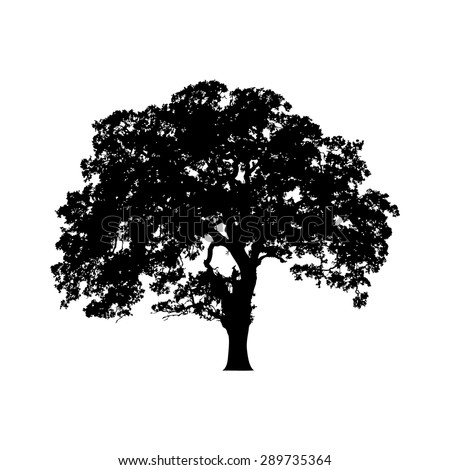 Beautiful vector tree silhouette icon for websites - stock vector
