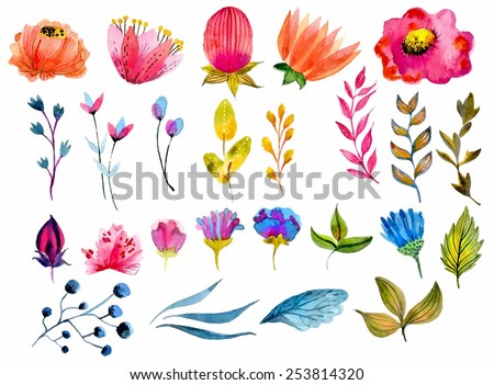 Beautiful Watercolor flower set over white background for design - stock vector