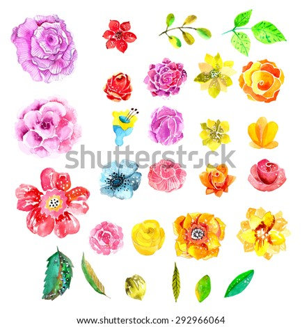 Beautiful Watercolor flower set over white background for design, Vector - stock vector