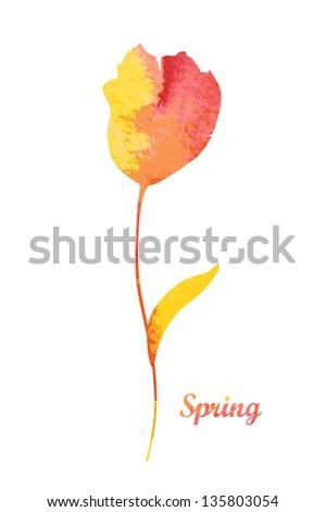 Beautiful watercolor flower. Vector illustration - stock vector