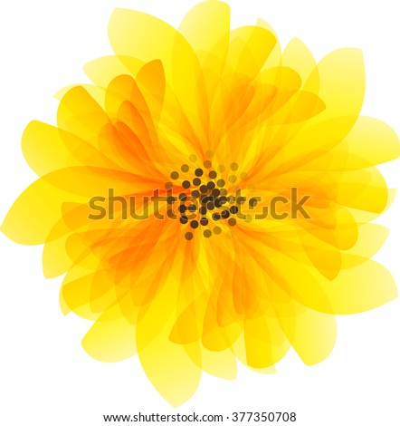 beautiful yellow daisy flower isolated. for greeting cards and invitations of wedding, birthday, mother's day and other seasonal holiday - stock vector