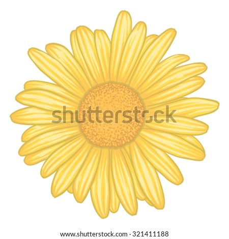beautiful yellow daisy flower  with effect watercolor isolated on white background. for greeting card and invitation of the wedding, birthday, Valentine's Day, mother's day and other seasonal holidays - stock vector