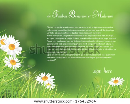 beautifull summer green  background with chamomile flowers - stock vector