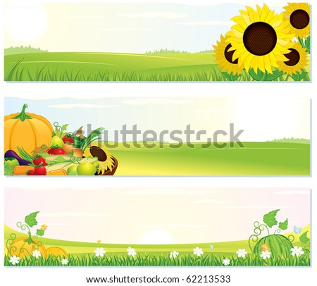 Beauty Nature banners, vector set of illustration include: sunny rural landscape, sunflowers, ripe harvest, green field... - stock vector