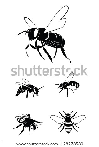 bee Collection Set - stock vector