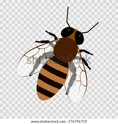 Bee On A Transparent Background Honey