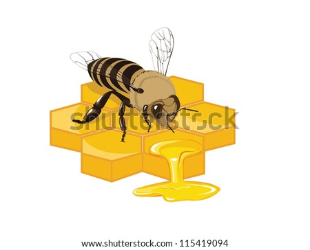 Bee with its hive - stock vector