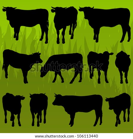Beef cattle detailed silhouettes illustration collection background vector - stock vector