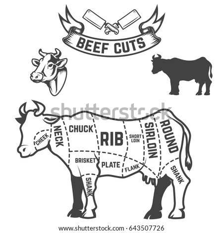 beef cuts butcher diagram cow illustrations stock vector