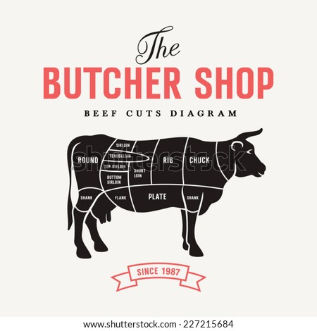 Beef cuts diagram, vector illustration for your design - stock vector