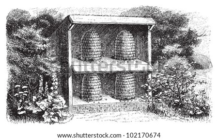 Beehive / vintage illustration from Brockhaus Konversations-Lexikon 1908 - stock vector