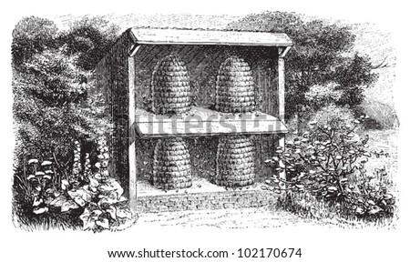 Beehive / vintage illustration from Brockhaus Konversations-Lexikon 1908 - stock vector