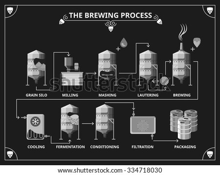 Beer brewing process. Vector beer production infographic set. Order mashing lautering product illustration - stock vector