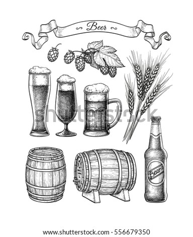Beer set. Vector illustration of glasses and mug, hops, malt, barrels and bottle. Isolated on white background.